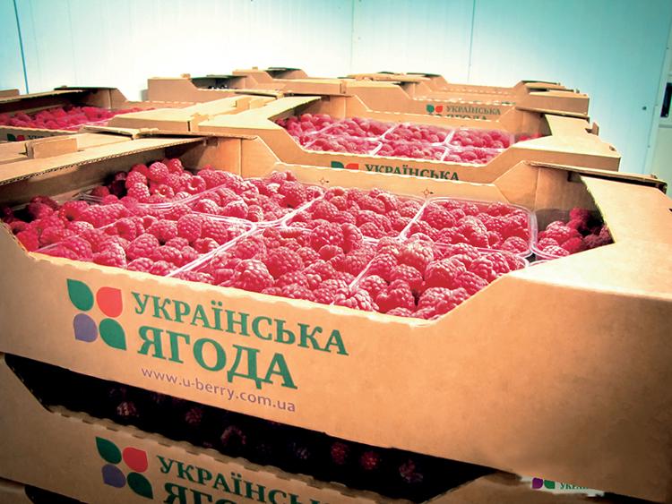 14_taras-bashtannik_malinovyy-zapah-pribyli