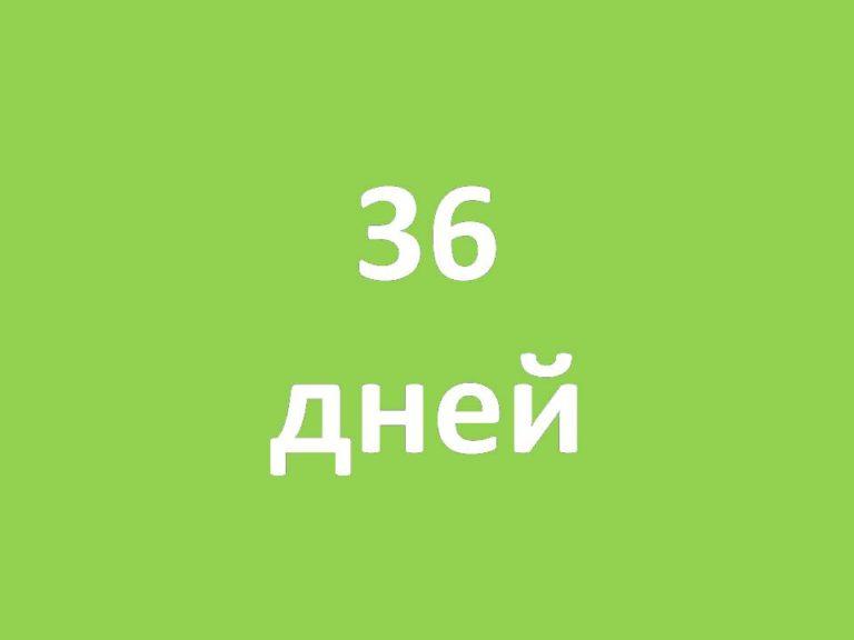 Цифра_дня_від_18_05_08_Про_36_дней_длилась_в_Киеве_метеорологическая_весна_РУС