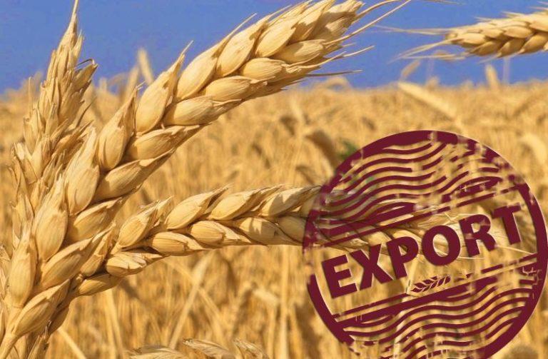 export6298562630