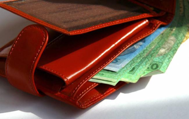 money_ukrainian_hryvnia_purse_grivnas_1385_id35765_650x410_6_650x410