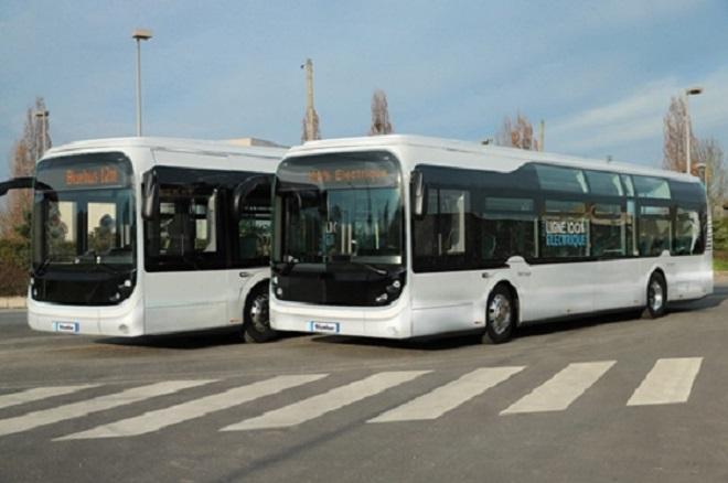 Bluebus122-355